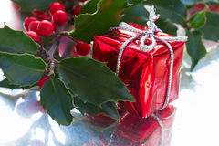 Holly  green leaves and red berries Stock Photos