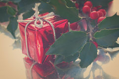Holly  green leaves and red berries Royalty Free Stock Photos