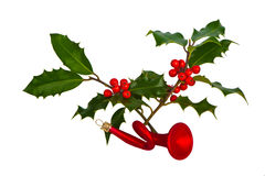 Holly ilex on white Royalty Free Stock Image
