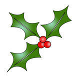 Holly illustration - high resolution Royalty Free Stock Photography
