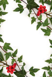 Holly and Ivy Abstract Frame Stock Photography