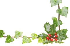 Holly and ivy frame Royalty Free Stock Photography
