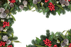 Holly Ivy and Mistletoe Border Royalty Free Stock Photo