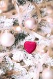 Holly Jolly Christmas - cadeau pour elle photo libre de droits