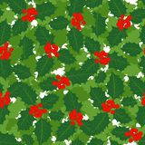 Holly leaves and berries holiday seamless pattern Stock Photos