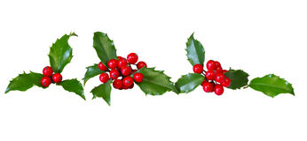 Holly Leaves Row Royalty Free Stock Photo