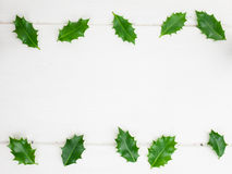 Holly leaves Royalty Free Stock Image