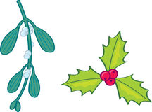 Holly and Mistletoe Stock Photo