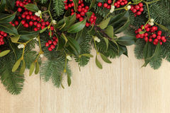 Holly and Mistletoe Border Stock Photo