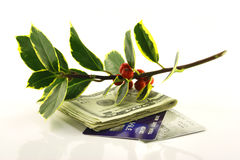 Holly with Money and Credit Cards Stock Photography