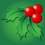 Holly ornament over green Royalty Free Stock Images
