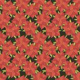 Holly pattern Royalty Free Stock Images