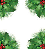 Holly with pine branches seasonal border frame. Holly with pine branches and red berries for a seasona christmas holiday decorative evergreen border frame Royalty Free Stock Photos