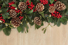 Holly and Pine Cone Border Stock Photo