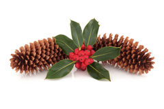 Holly and Pine Cone Decoration Stock Photography