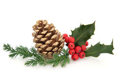 Holly and Pine Cone Decoration Royalty Free Stock Photography