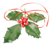 Holly with red ribbon Royalty Free Stock Image