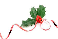 Holly and ribbon Stock Photo