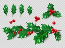 Holly Set. Realistic leaves, branch, red berries. Christmas and New Year decorations. 3d illustration for your layout