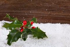 Holly in snow and space for text Royalty Free Stock Photos