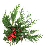Holly and Winter Greenery. Christmas and winter decoration with holly and red berries, ivy and cedar cypress leaf sprigs over white background Royalty Free Stock Photography