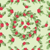 Holly. A wreath of leaves and berries. Royalty Free Stock Image