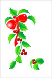 Holly04. Holly isolated elements on white background Royalty Free Stock Photo