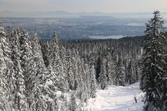 Hollyburn peak point of view on Vancouver City. Landscape with beautiful big snowy firs trees, snow. Hiking in the national park reflexion with nature admire Stock Images