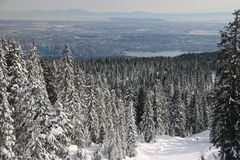 Hollyburn peak point of view on Vancouver City. Nlandscape with beautiful big snowy firs trees, snow. Hiking in the national park reflexion with nature admire Stock Photos