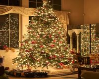 Hollydays Christmas Santa Clause Green fir Stock Image