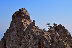 Hollydays in Crimea. Sunny day in Crimea mountains Stock Images
