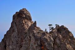 Hollydays i Krim Arkivbilder