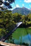 Hollyford, Nationalpark Fiordland lizenzfreie stockbilder