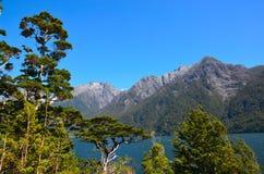Hollyford, Nationalpark Fiordland lizenzfreies stockfoto