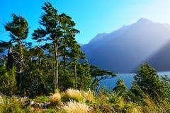Hollyford, Nationalpark Fiordland lizenzfreies stockbild