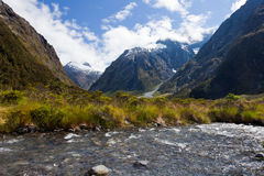 Hollyford River valley in Fjordland NP, NZ Royalty Free Stock Image