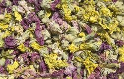 Hollyhock flower Royalty Free Stock Photos