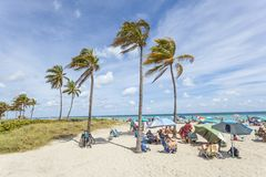 Hollywood Beach, Florida. Hollywood Beach, Fl, USA - March 13, 2017: People relaxing under palm trees at the Hollywood Beach on a sunny day in March. Florida royalty free stock image