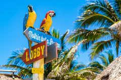 Hollywood Beach Florida. Hollywood Beach, Florida - July 6, 2017: Cityscape view of the colorful signs for the Margaritaville Resort, a popular tourist Stock Photos