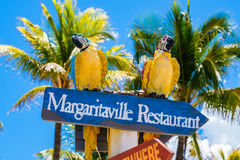 Hollywood Beach Florida. Hollywood Beach, Florida - July 6, 2017: Cityscape view of the colorful signs for the Margaritaville Resort, a popular tourist Royalty Free Stock Photos