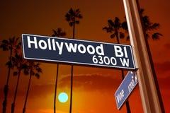 Hollywood Boulevard avec l'illustration de signe de vigne sur des palmiers Images libres de droits
