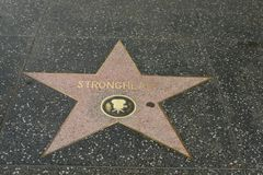 Strongheart star on the Hollywood Walk of Fame Stock Photo