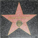 Estrella de Debbie Reynolds de la actriz en el paseo de Hollywood de la fama fotos de archivo libres de regalías