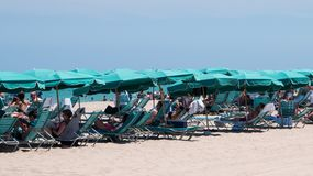 People under umbrellas of same color on the beach. Hollywood, Florida - April 19, 2018: Group of beach goers under blue green umbrellas on the beach on this date stock image