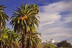 Hollywood hills Observatory Royalty Free Stock Images