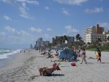 Hollywood plaża, Pembroke sosny zdjęcia stock