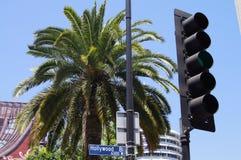 Hollywood Querstation, Zeichen, Palme, Baum, Ampel, Los Angeles, Kalifornien, USA, blauer Himmel lizenzfreie stockfotos