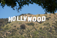 Hollywood Sign. Image of the Hollywood Sign with yellow flowers in the foreground Stock Images