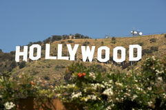 Hollywood sign. Famous Hollywood Sign with plants in the foreground