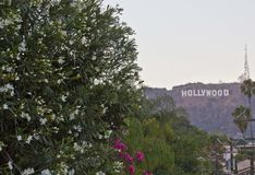 The Hollywood Sign, icon located in Los Angeles Royalty Free Stock Photo